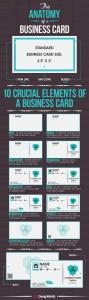Business-Card-Anatomy